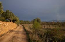 El Camí de Matarranya-Algar entre Batea i Beseit s'incorpora a la xarxa de camins naturals