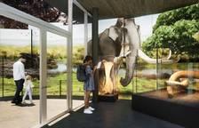 Terminan el proyecto museográfico del yacimiento del Barranco de la Boella