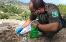 Denuncien el propietari d'una caseta de camp de Tortosa per enverinar gossos amb esquers