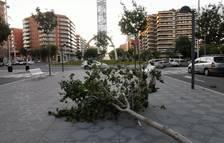 Cau un ferro a causa del vent a Vila-seca i fereix lleument dues persones