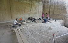 Troben al Barranc de la Boella restes de hienes i jaguars de fa un milió d'anys