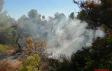 Imatge de l'incendi de