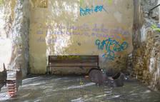 Apareixen noves pintades a la plaça dels Natzarens de la Part Alta