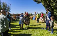 Tarraco Viva aporta lliçons d'història tot i les restriccions per la pandèmia