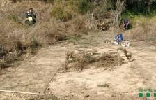 Sancionan a un cazador furtivo de pájaros fringílidos en Montblanc