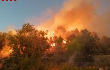 Diez dotaciones de Bombers siguen trabajando en la extinción del incendio en Coll Redó de Tortosa
