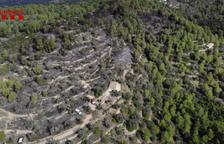 Els Mossos detenen dues persones per l'incendi forestal al Coll Redó de Tortosa