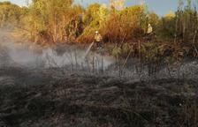 Un incendi afecta una hectàrea de vegetació a Creixell