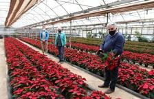 Estudiants de l'INS d'Horticultura de Reus aprenen cultivant 6.500 ponsèties