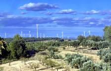 L'Ajuntament de l'Ametlla de Mar s'oposa al nou parc eòlic de l'Ametlló