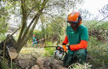 El Ayuntamiento de Tarragona estudia que rebaños de cabras mantengan los bosques