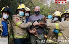 Bombers rescatan un perro que se había caído a un pozo en Vilallonga del Camp