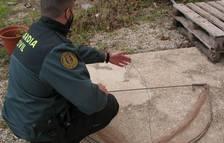 Investigado por colocar una trampa ilegal para capturar aves rapaces en Cabra del Camp