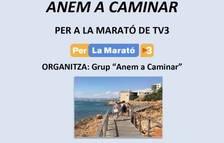 El grup 'Anem a caminar' organitza una sortida per Salou amb l'objectiu de recollir fons per la marató de Tv3