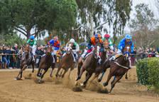 Caballos ingleses purasangre correrán el domingo en el Cós de Sant Antoni de Vila-seca