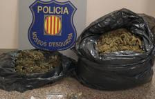 Los agentes pararon el vehículo del cual salía un fuerte olor a marihuana.