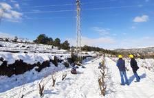 Pla de contingència d'Endesa per millorar la xarxa de distribució al Priorat en cas de temporals