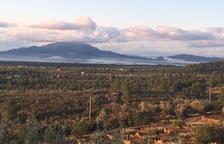 Pla general de la zona on es projecte el nou parc eòlic.