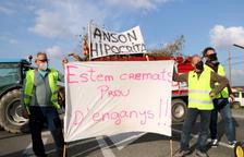 Els pagesos tallant la C-12, a l'altura del Flix, en la protesta per exigir ajuts directes per compensar els danys causats pel temporal Filomena als camps d'oliveres.