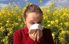 Descobreixen que altes concentracions de pol·len fan augmentar les infeccions per coronavirus