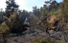 Denuncien un pagès com a responsable de l'incendi que va cremar 43 hectàrees a Senan