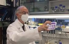 La vacuna del CSIC contra el coronavirus serà efectiva contra noves variants