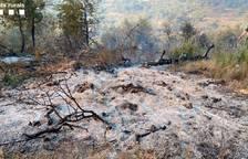Queman dos hectáreas de pino carrasco y matorrales en Palma d'Ebre