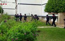 A presó dos veïns de Salou per dos robatoris amb força en poc més d'una hora