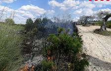 Cremen 200m2 dels marges de la carretera de Miravet a Pinell de Brai