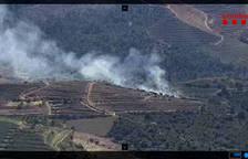 Controlado un incendio de vegetación forestal y de viñas en Gratallops