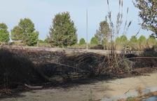 Els Bombers actuen per apagar un incendi de vegetació en una zona entre La Canonja i Reus
