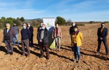 Els alcaldes asseguren que els parcs fotovoltaics malmeten el paisatge de la comarca.