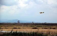 Una avioneta que fa les fumigacions contra el mosquit al Delta de l'Ebre.