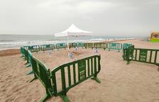 Localizan una tortuga careta desovando en la playa l'Estany-Mas Mel de Calafell
