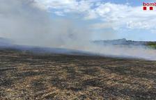 Extinguen un incendio de 5,5 hectáreas en un campo de cereal en Alió