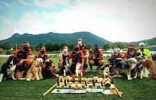 Reus, escuela de perros campeones