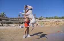 La platja per a gossos a Tarragona s'estrena després d'una setmana de proves
