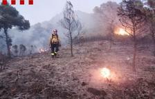 Els bombers donen per extingit l'incendi forestal de Móra d'Ebre, que ha afectat unes 4 hectàrees