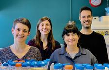 Determinen l'eficàcia d'alguns col·lutoris per reduir la capacitat d'infecció de la covid
