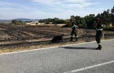 El Govern ve «casi» controlado el incendio de Santa Coloma, que no fue provocado