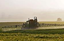 Encuentran 24 nuevas sustancias nocivas derivadas de pesticidas