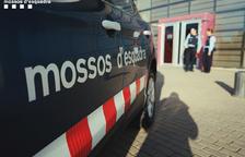 Los Mossos d'Esquadra detienen a cuatro personas por un robo de algarrobas en Riudoms