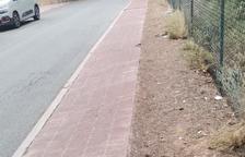 Veïns de la Móra denuncien els constants atropellaments d'esquirols