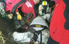 El cavall ha estat rescatat finalment amb un helicòpter.