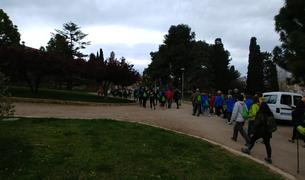 La caminada s'ha fet per celebrar el Dia Mundial de l'Activitat Física.