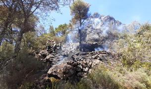Controlat un incendi de vegetació forestal proper al coll de la Creu a l'Arbolí