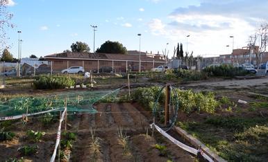 Els horts urbans a la província de Tarragona