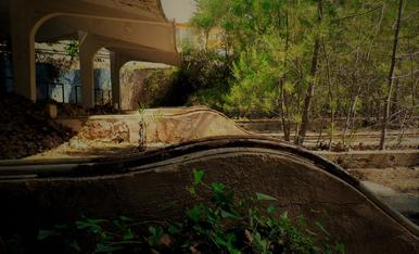 La bolera abandonada de la Ciutat Residencial