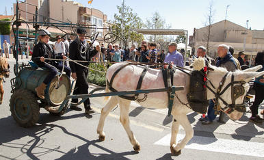Els Tres Tombs de la Selva del Camp (2)