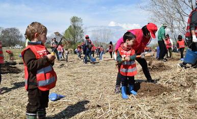 La plantada d'arbres (2)